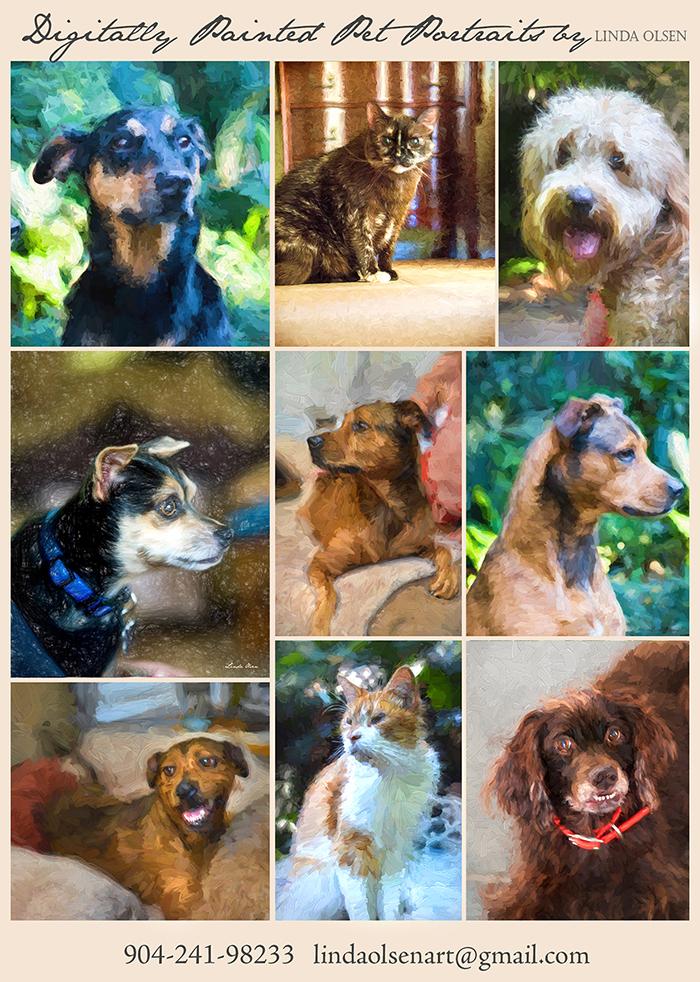 Pet portraits adx