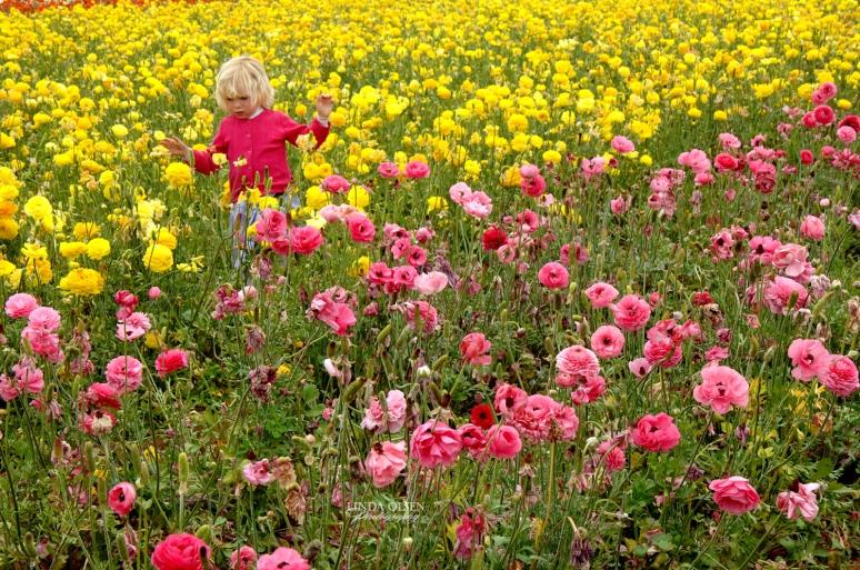 Danielle in field